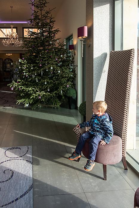 photoblog image Making himself at home