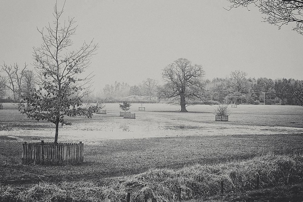 photoblog image Croome in the gloom