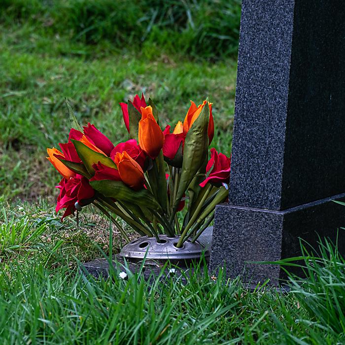 photoblog image Floral tribute