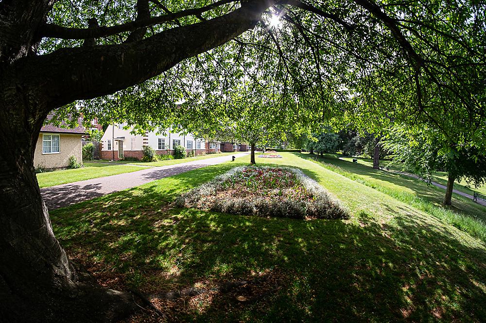 photoblog image A wide eyed look at Gheluvelt park 5 of 5