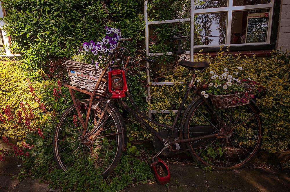 photoblog image Bicycle