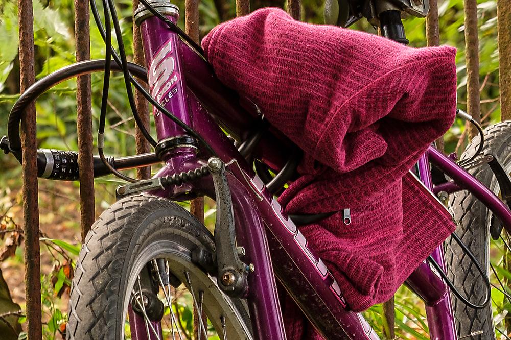 photoblog image Purple Bike Friday